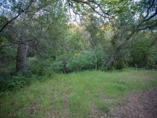 Creekside Drive, Shingle Springs CA