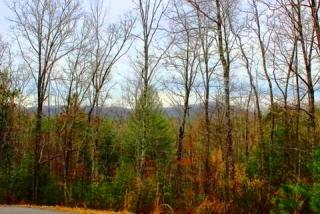 4 Mull Valley Rd Trail 4, Morganton GA