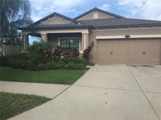 11404 Blue Crane Street, Riverview FL