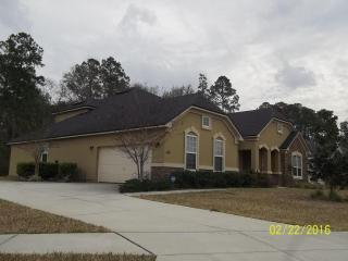 4339 Song Sparrow Drive, Middleburg FL