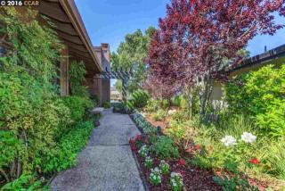 667 Cross Ridge Place, Orinda CA