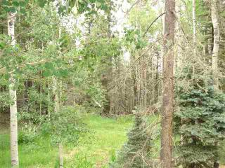 LOT 1433 1433 Calle De Los Caballeros, Angel Fire NM