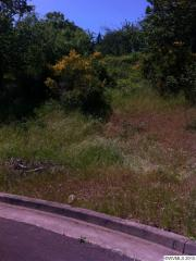 Spencer Mountain Lot 9 Drive Northwest, Albany OR