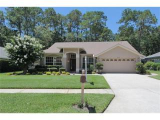 3362 Laurelwood Court, Tarpon Springs FL