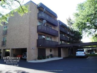 1927 Tanglewood Drive #3A, Glenview IL