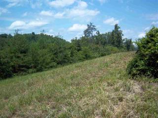 6250 Outlook Trail, Russellville TN