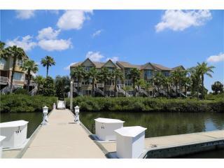 4351 Spinnaker Cove Lane, Tampa FL