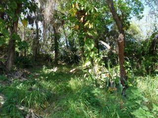 2701 North Indian River Drive, Cocoa FL