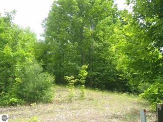 East Pinehurst Trail, Cedar MI