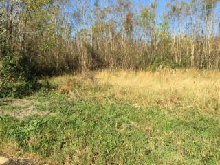 Lot 16 Mary Ruth Drive, Gulfport MS