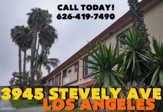 3945 Stevely Ave, Los Angeles, CA 90008