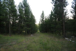 187 Bear Cat Trail, Marion MT