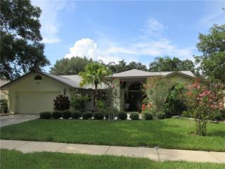5577 Oakridge Drive, Palm Harbor FL
