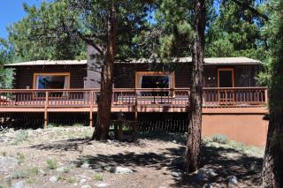 238 County Road 26, Twin Lakes CO