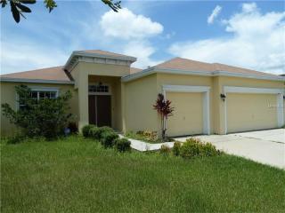 10756 Carloway Hills Drive, Wimauma FL