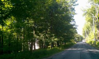 Todd Road Trail #11, Woodbourne NY