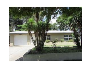 10269 Blossom Lake Drive, Seminole FL