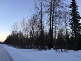 10488 East Susitna River Road, Trapper Creek AK
