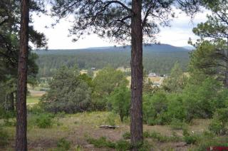 107 Woodland Drive, Pagosa Springs CO