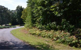 4 Brer Fox Ridge Road, Hiawassee GA