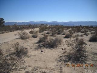 Desert Shadow Road, Joshua Tree CA