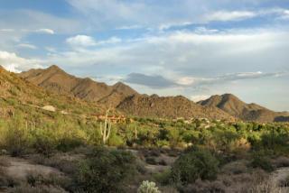 9820 East Thompson Peak Parkway #839, Scottsdale AZ
