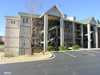 330 South Wildwood Drive, Branson MO