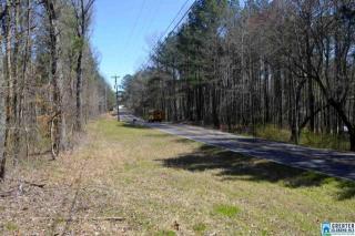 9835 Camp Oliver Road, Adger AL