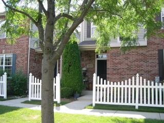 18524 Dearborn Court, Tinley Park IL