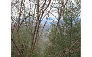 Lot 3 Helton Falls Retreat, Blairsville GA