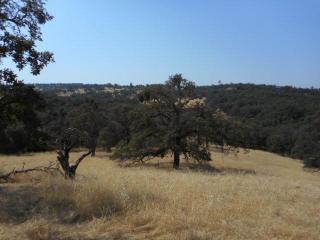 20126 White Oak Drive, Grass Valley CA