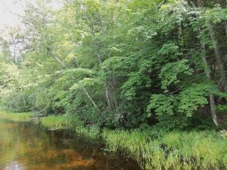 5 Whispering Pines Drive, Mercer WI