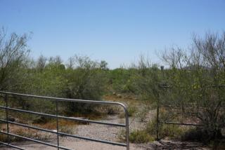 47 West Circle Mountain Road, New River AZ