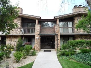 1208 71st St #4, Downers Grove, IL 60516