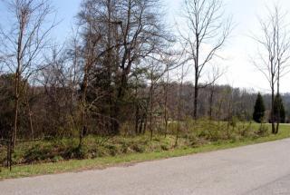 174 Shady Oak Lane, Forest VA