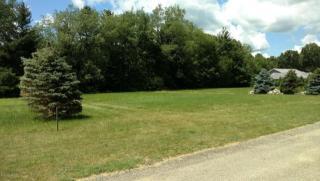 14103 Connor Farms Court Northeast, Cedar Springs MI