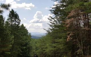 Little Mountain Road, Ducktown TN