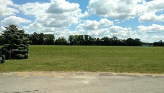 14100 Connor Farms Court Northeast, Cedar Springs MI