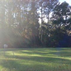 Bagley Avenue, Hinesville GA