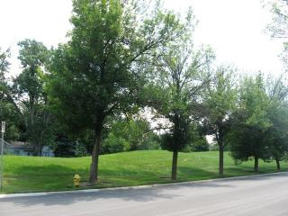 Lot 19 Parkview Boulevard, Lombard IL