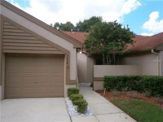 3456 Hillmoor Drive, Palm Harbor FL