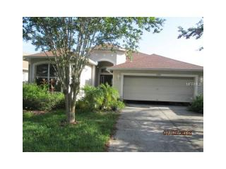 21905 Waverly Shores Lane, Land O' Lakes FL