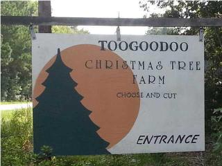 7181 Toogoodoo Road, Yonges Island SC