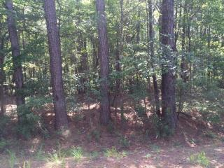 Lot 1 Sedgewick Road, Summerville SC
