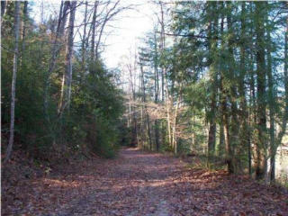 Bear Den Trail, Grandview TN