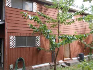 4544 51st Place Southwest, Seattle WA