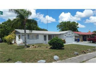 1345 Russel Lane, Holiday FL