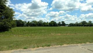14050 Connor Farms Court, Cedar Springs MI