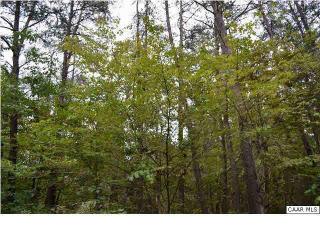 111 William Monroe Trail, Stanardsville VA