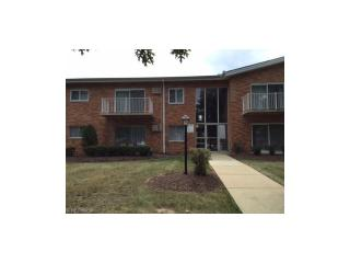 491 Tollis Parkway #274E, Broadview Heights OH